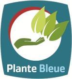 plante_bleue.jpg